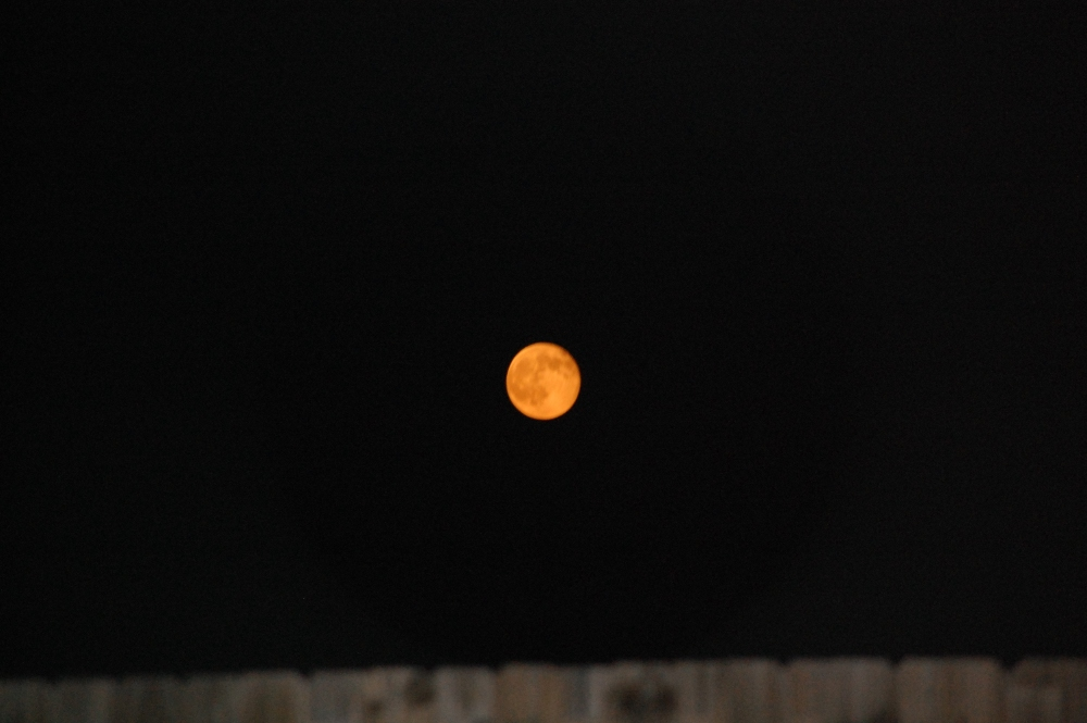 Bright Orange Summer Moon Over Augusta, Georgia