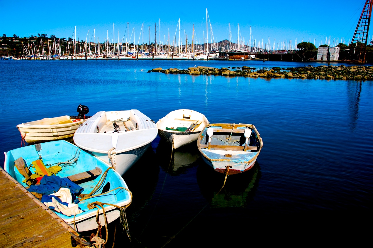 Boats at the Dock - Marin County, California