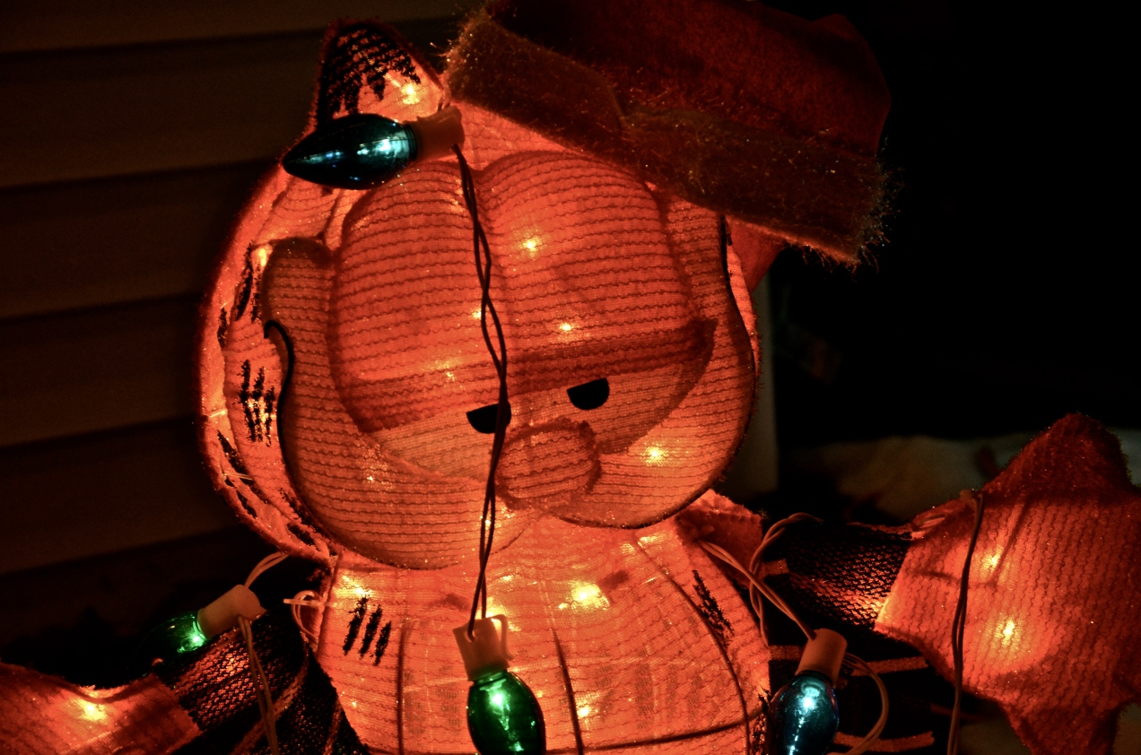 Garfield Christmas Lights
