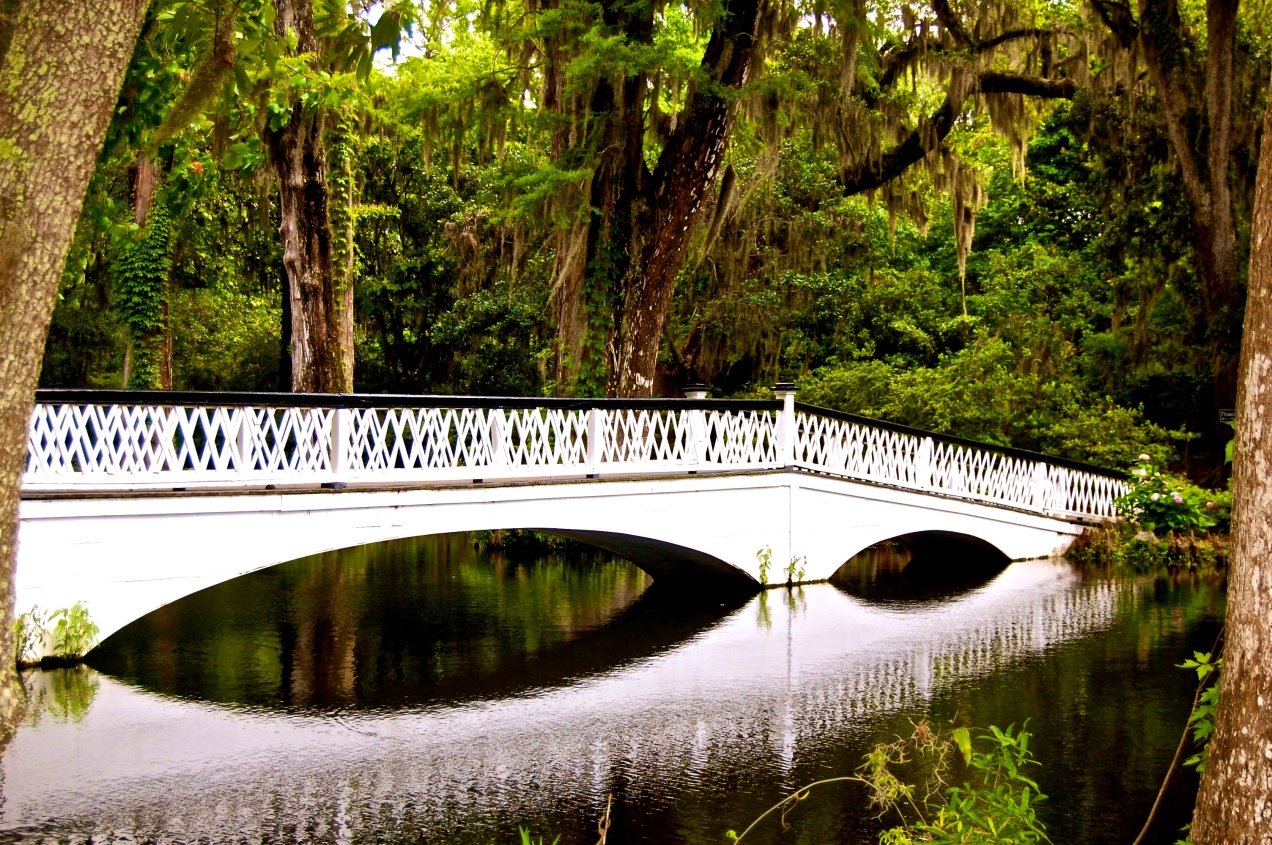 A Bridge's Reflection - Magnolia Plantation, Charleston, SC