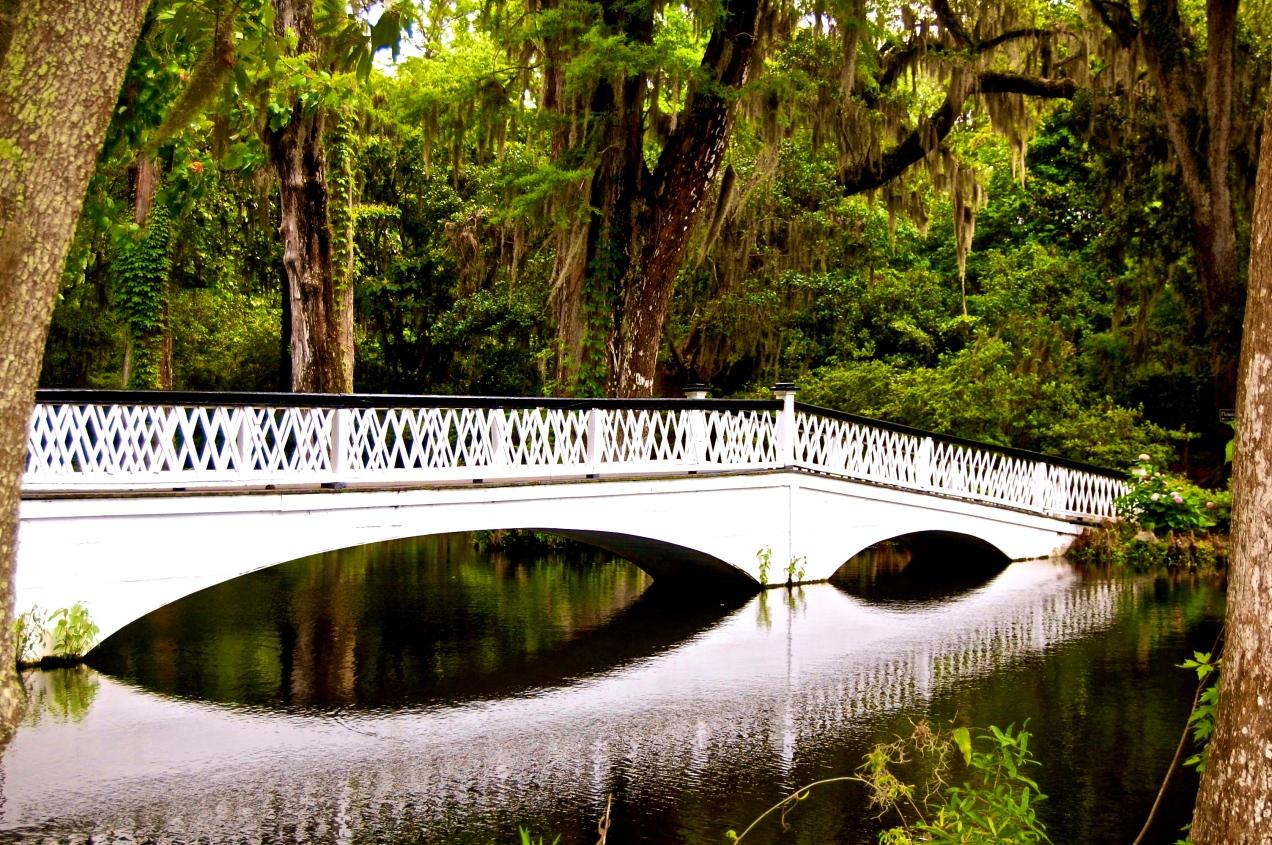 A Bridge's Reflection - Magnolia Plantation, Charleston, SC