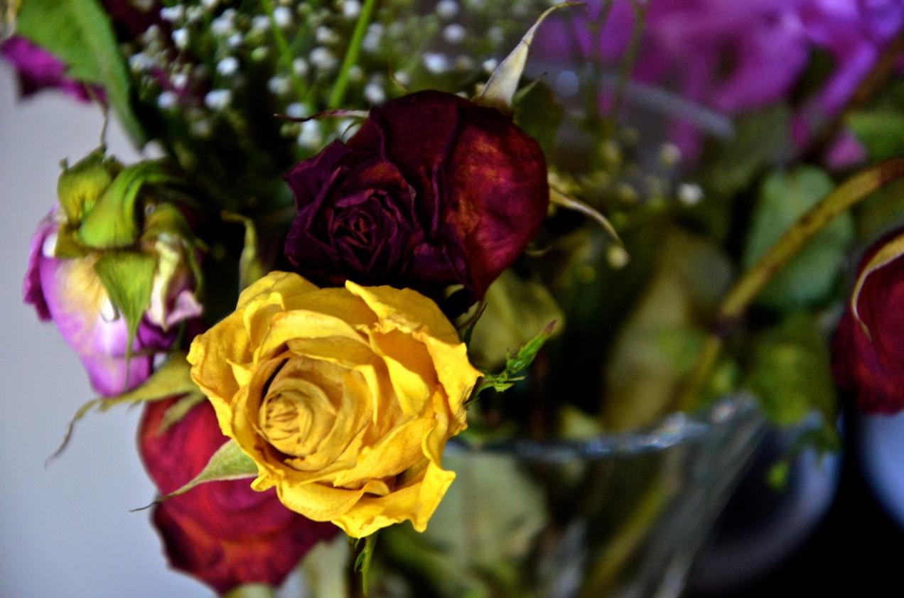 Saturday Flowers